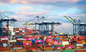 Congestion and delays at New Zealand's ports by Francesco Petrilli